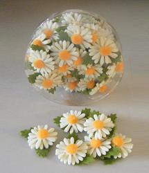 Kadodeco Margriet